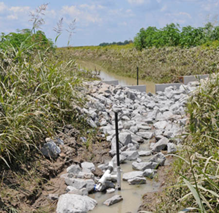 Investigation of denitrifying microbial communities in drainage ditches with low-grade weirs
